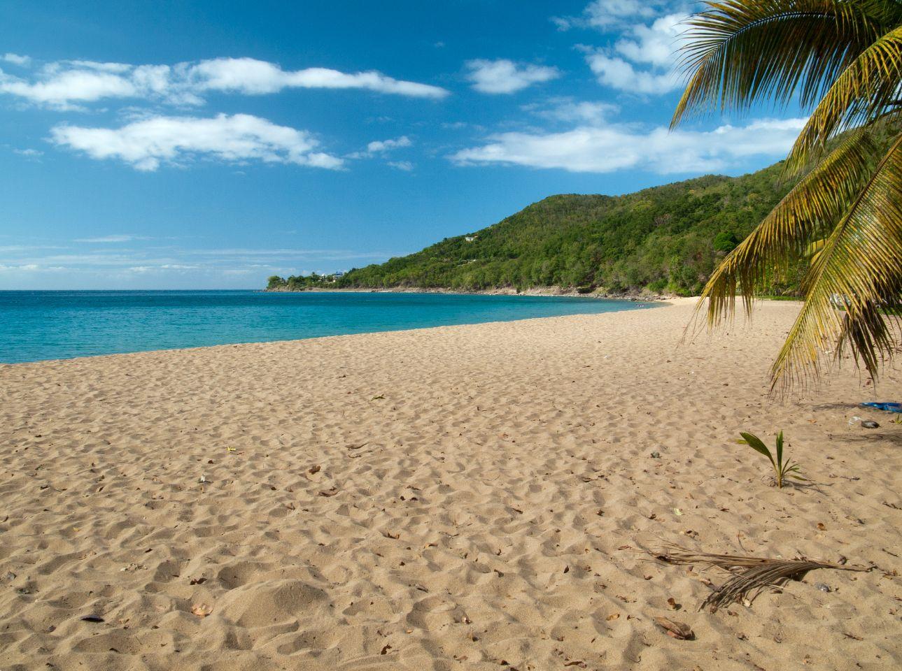 plage-en-Guadeloupe